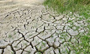Nuova Strategia Europea sulla protezione del suolo: TAUW presenta il suo position paper