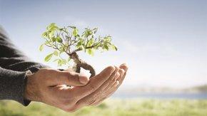 Reati Ambientali: Come ridurre il rischio?